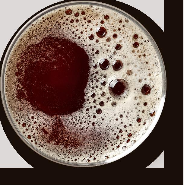 madrid craft beer